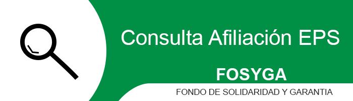 fosyga consultar online